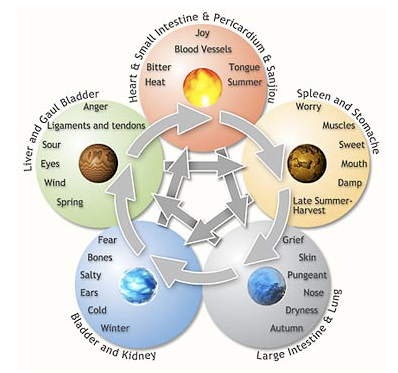 Five Elements Theory Link Human Body To Natural Environment